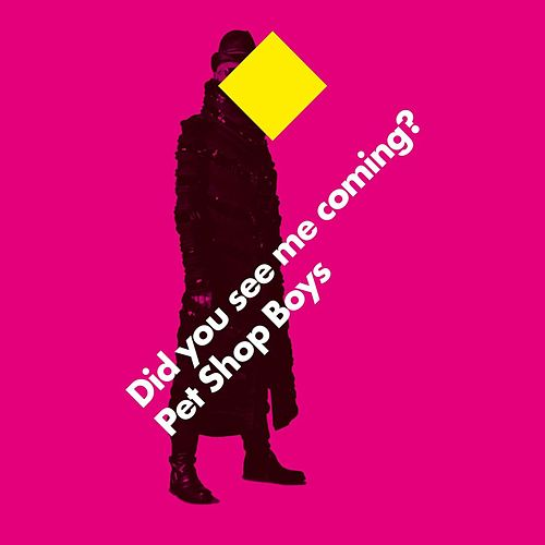 Did you see me coming? by Pet Shop Boys