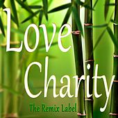 Love Charity (Remixes) by Cristian Paduraru