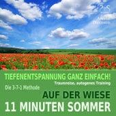 11 Minuten Sommer: Auf der Wiese - Tiefenentspannung, Traumreise, Autogenes Training by Torsten Abrolat