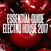 Essential Guide Electro House 2017 by Various
