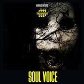 Soul Voice by Various