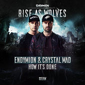 How It's Done (Radio Edit) by Endymion