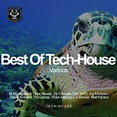 Best Of Tech-House - EP by Various Artists