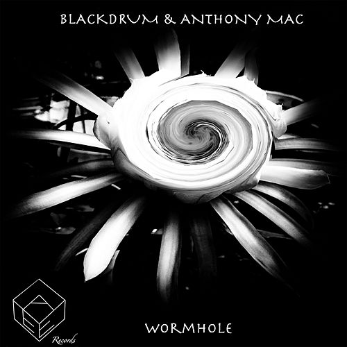 Wormhole by The Black Drum