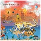 Animals Lead Us von Kahali