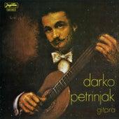 Gitara by Darko Petrinjak