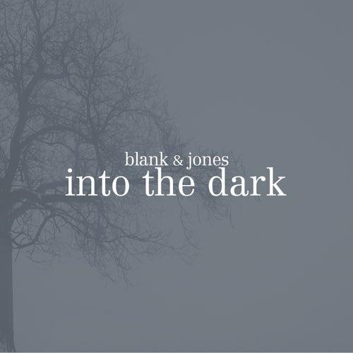 Into the Dark von Blank & Jones