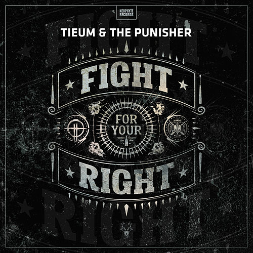 Fight For Your Right by Tieum