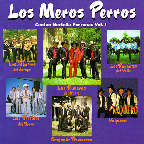 Cantan Norteñas Perronas Vol. 1 by Various Artists