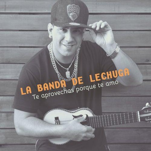 Te Aprovechás Porque Te Amo de La Banda De Lechuga