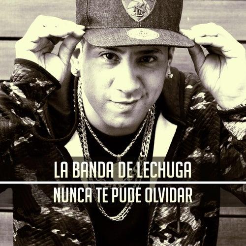 Nunca Te Pude Olvidar de La Banda De Lechuga