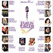 Eflatun Türküler by Various Artists
