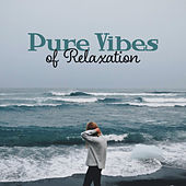 Pure Vibes of Relaxation by Echoes of Nature