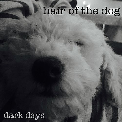 Dark Days by Hair of the Dog
