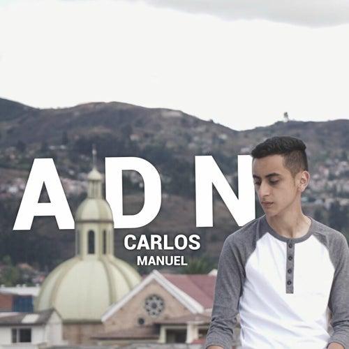 Adn by Carlos Manuel