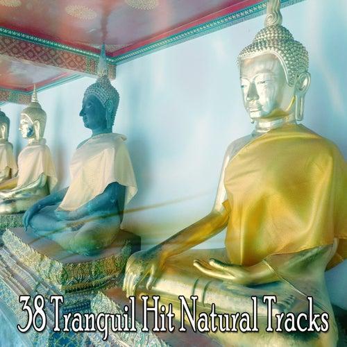 38 Tranquil Hit Natural Tracks de Meditation Music Zone