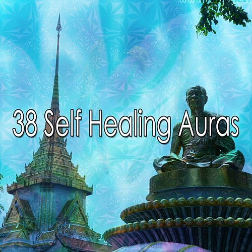 38 Self Healing Auras de Meditation Music Zone