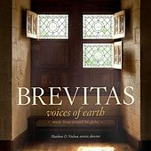 Voices of Earth by Brevitas