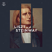 Liszt on a Steinway by Various Artists