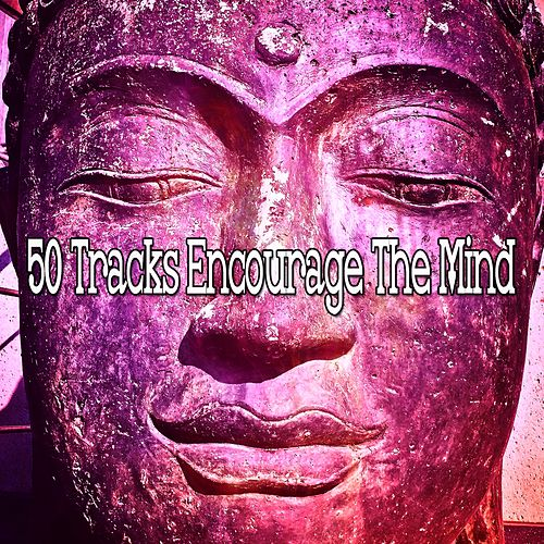 50 Tracks Encourage The Mind by Yoga Music