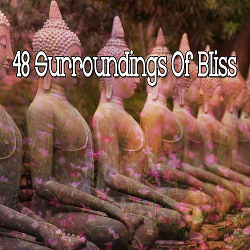 48 Surroundings Of Bliss by Meditation Music Zone