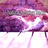 31 Natural Relaxing Tracks by Rockabye Lullaby