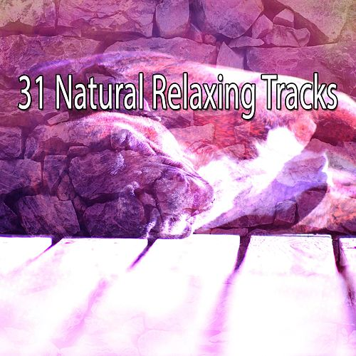 31 Natural Relaxing Tracks de Rockabye Lullaby
