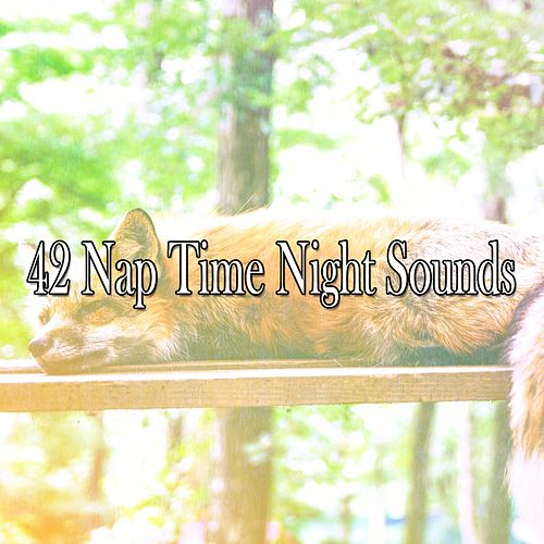 42 Nap Time Night Sounds de Relajacion Del Mar