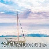 35 Of Natures Auras by Zen Music Garden