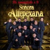 He Renunciado a Ti by Sonora Altepexana