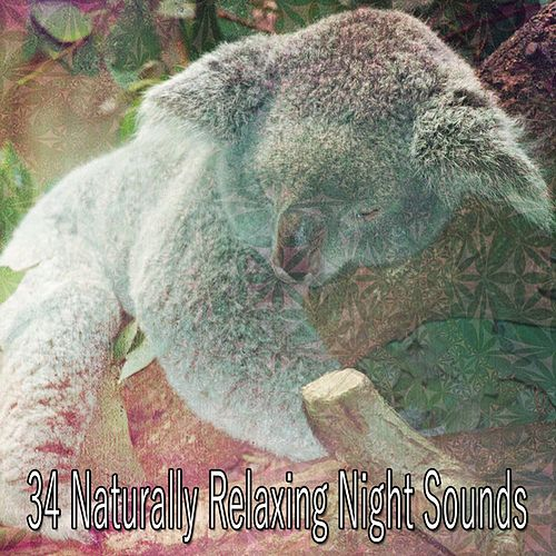 34 Naturally Relaxing Night Sounds by Sounds Of Nature