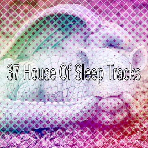 37 House Of Sleep Tracks by Ocean Waves For Sleep (1)