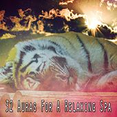32 Auras For A Relaxing Spa by Best Relaxing SPA Music