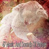 47 Music And Sounds Of Nature by Nature Sound Series