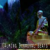 Calming Binaural Beats by Binaural Beats Brain Waves Isochronic Tones Brain Wave Entrainment