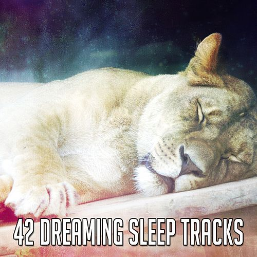 42 Dreaming Sleep Tracks by Lullaby Land