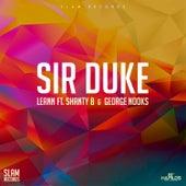 Sir Duke by Leann