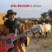 Play & Download Tabital Pulaaku by Afel Bocoum | Napster