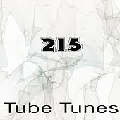 Tube Tunes, Vol. 215 by Various Artists