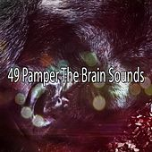 49 Pamper The Brain Sounds by S.P.A