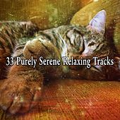 33 Purely Serene Relaxing Tracks by White Noise For Baby Sleep