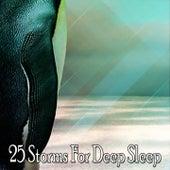 25 Storms For Deep Sleep by Thunderstorm Sleep