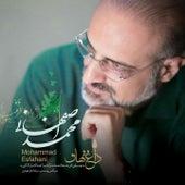 Daghe Nahan by Mohammad Esfahani