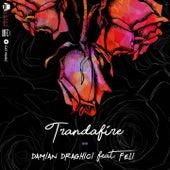 Trandafire by Damian Draghici