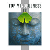 Top Mindfulness (111 Deep Contemplation for Mind Transformation) by Various Artists