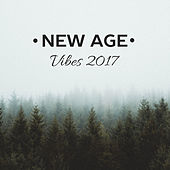New Age Vibes 2017 by Relaxing