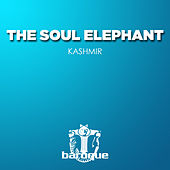 Kashmir by The Soul Elephant