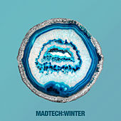 Madtech Winter 2017 by Various Artists