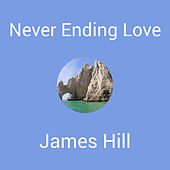 Never Ending Love by James Hill