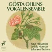 Håkanson, Norman & Brahms by Various Artists